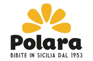 polara-new-logo-304x304